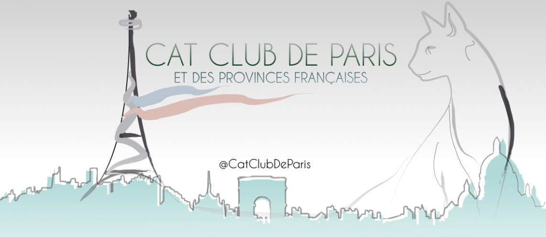 Cat club de Paris et des provinces françaises